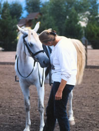 Fees for Horseback Riding Lessons, Horse Boarding in Albuquerque